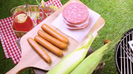 grilling : Summer picnic with small charcoal grill in the park.