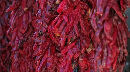 pimentas : Dried red chili peppers hanging at the local Farmers Market.