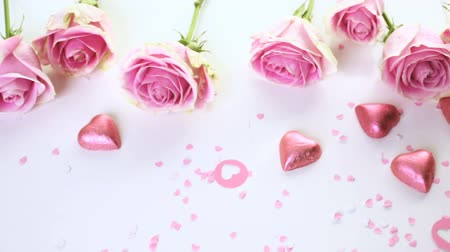 perene : Pink roses on pink background.