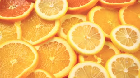 jídla : Variety of citrus fruit including lemons, lines, grapefruits and oranges.