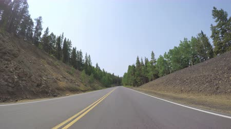 montanhas rochosas : Car driving through alpine forest on Mount Evans-POV point of view. Stock Footage