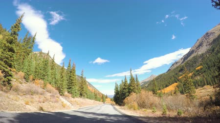 lombhullató : POV point of view - Driving through alpine forest in the Autumn.