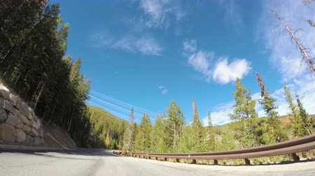disambiguation : POV point of view - Driving through alpine forest in the Autumn.