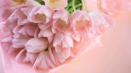 laleler : Light pink tulips on a pink background. Stok Video