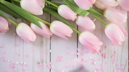 trvalka : Light pink tulips on a wood background.
