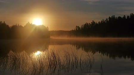 göl : Morning sunrise on a lake in Canada - Foggy morning
