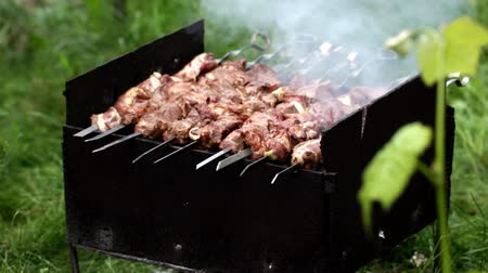 grillowanie : Preparation of a shish kebab on the grill on the lawn in the garden