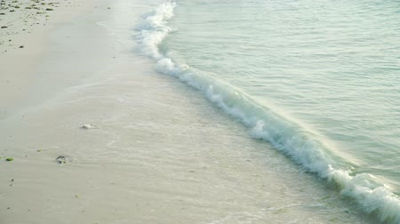 タンザニア : Sea foamy waves rolling on and washing clean white sand beach of tropical ocean coast line in evening. Nungwi beach, Zanzibar, Tanzania. 動画素材