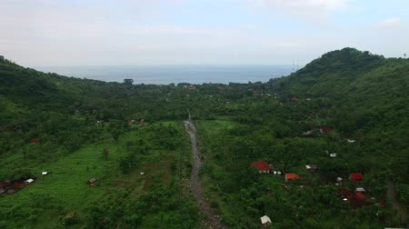 Fast Flight along mountains covered with rainforest over green vegetation plants and river stream with local houses in cloudy weather. Aerial footage of Lovina village, Bali, Indonesia. Wideo