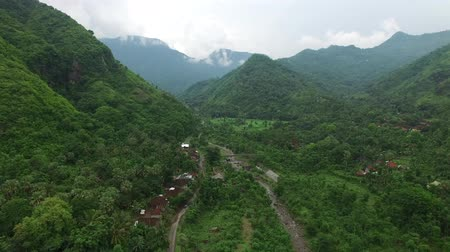 Flight along mountains covered with rainforest over green vegetation plants and river stream with local houses in cloudy weather. Aerial footage of Lovina village, Bali, Indonesia.