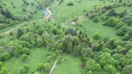 kočičí hlava : Aerial drone footage of the camp at the creek in the forest. Dostupné videozáznamy
