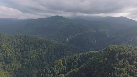 лесное хозяйство : Panoramic landscape of mountain forest. Aerial drone footage.