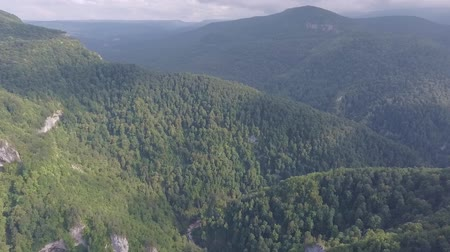 hegyoldalban : Panoramic landscape of mountain forest. Aerial drone footage.