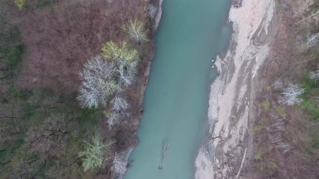 plage : A fallen tree in a turquoise river. Top view.