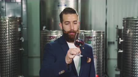 szőlőművelés : Bearded man degustating wine.