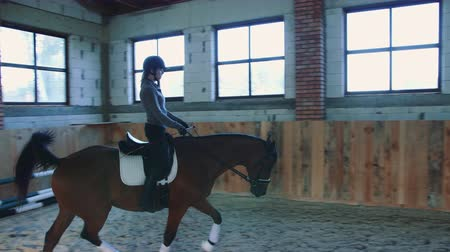 terbiye : View of woman training and riding horse on sandy arena under roof. Stok Video