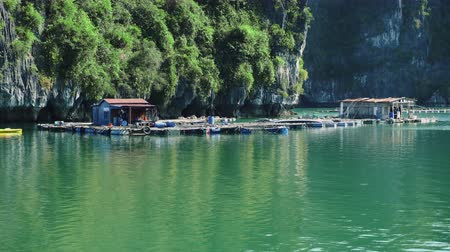 plovoucí : Floating Fishing Village In The Ha Long Bay. Cat Ba Island, Vietnam.