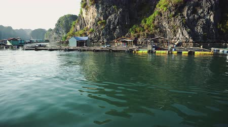 ba : Floating Fishing Village In The Ha Long Bay. Cat Ba Island, Vietnam.