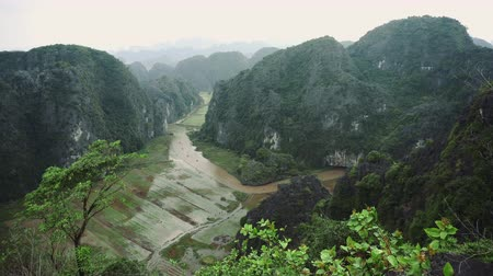 tam coc caves : Hang Mua Rice Fields Landscape In Ninh Binh, Vietnam Stock Footage