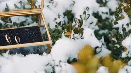 wedding and gold : Wedding rings in a glass box in the snow.