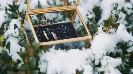 casar : Wedding rings in a glass box in the snow.