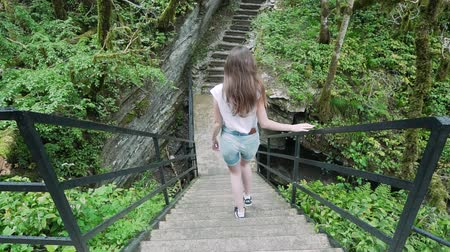 доисторический : View from the back: the girl descends the stairs in the rain forest