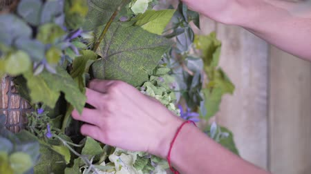dekoratör : Hands of the girl close-up: decorating flowers with a branch of green eucalyptus Stok Video
