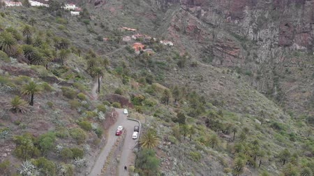 origin : Aerial. Valley in the mountains of volcanic origin, palm trees and stones in the gorge. Masca, Tenerife, Spain