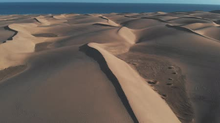 área de deserto : Aerial view - lonely girl standing on the sand, Maspalomas, Gran Canaria