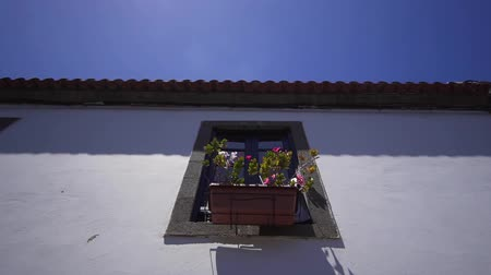 homeopático : Window with flowers on the wall of an old spanish house. Exterior of European Architecture Stock Footage
