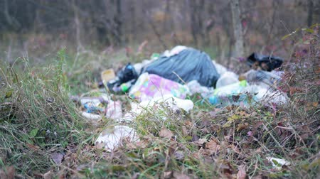 elenco : Garbage dump in the autumn forest. Ecological disaster, irresponsibility and negligence of man. Plastic and bags closeup