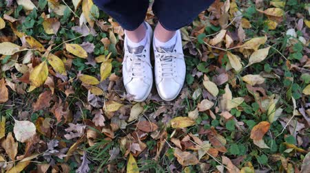 outubro : Womens feet in white stylish sneakers on beautiful fallen leaves, view from above. Autumn season, foliage covers the land Stock Footage