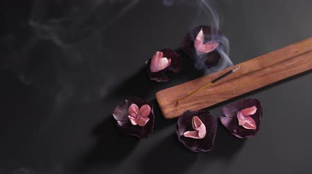 сжигание : Aromatic religious stick on a black background in a wooden stand. Dry fragrant soothing flowers in the spa. The concept of zen and meditation Стоковые видеозаписи