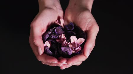 Womens hands show dry flowers on a black background. Aromatherapy in the palms. The concept of well-being and natural ingredients for calm Wideo