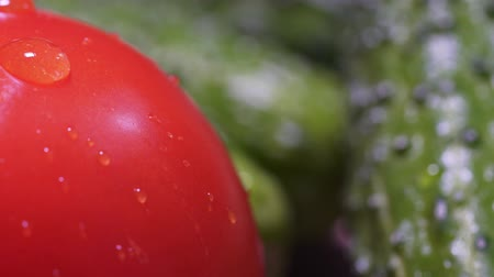 A drop of water flows down the red fresh tomato. A static macro shot. Green cucumbers in the background, beautiful vegetables close up, healthy lifestyle