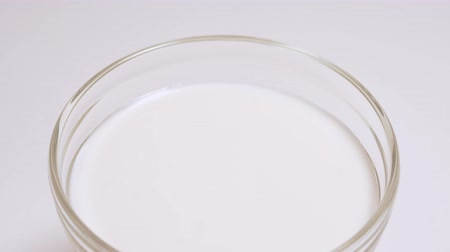 培養液 : Nutritious and diet vegan dairy product in a glass cup. Glass with a milk drink in isolation on a white background