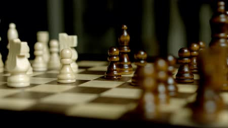 rytíř : Chess Came Close Up