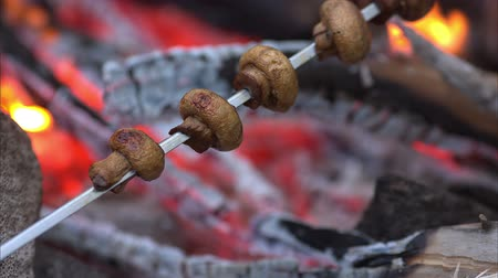 bbq grill : Mushrooms Over Flaming Hot BBQ Grill zubereitet. Sommer Cookout oder Grillparty oder Picknick-Szene mit niemand.
