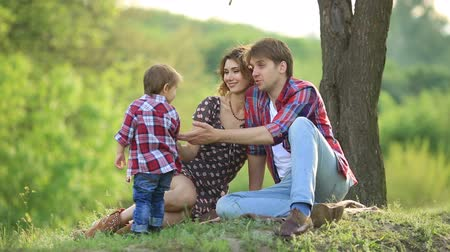 biztosítás : Happy family in a park on grass