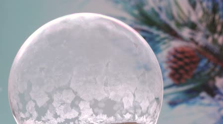 congelado : Winter Background. Freezing Snow globe Snowflake. For Christmas and New Year Holidays exclusive backdrop. Ice patterns slowly grow on ball of soap against fir-tree branch with the cone and snow background