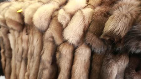 líska : Luxury clothes and furs in a retail fashion store.