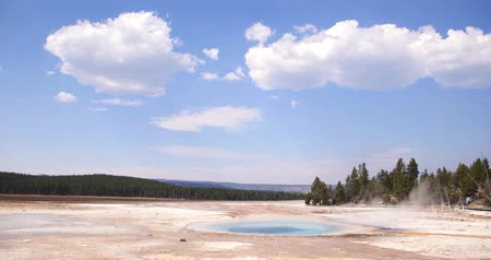 mammoet : Yellowstone National Park Landschap Scenic, Stoomende Hot Spring Geyser Stockvideo
