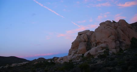 Beautiful Joshua Tree National Park Landscape at Dusk