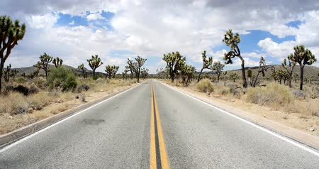 Iconic American Desert Highway through Joshua Tree National Park Wideo