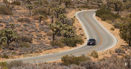 Car Driving on Joshua Tree Desert Highway, California Wideo