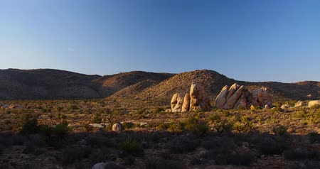 Joshua Tree Rocky Landscape Sunset Time lapse