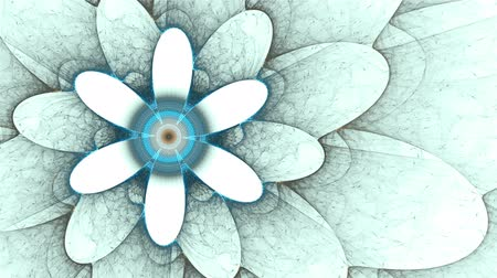 blooms : blue flower, spring, floral background, colorful flowers  on white, spring, abstract illustration animated, 30fps, HD1080, seamless loop Stock Footage