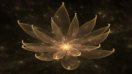 freshness background : Golden lotus water lily enlightenment or meditation and universe magic scene  Space flower starry lights fairy dust and universe tranquil  scene serene  motion on black background animated abstract illustration 30fps HD1080 seamless loop Stock Footage
