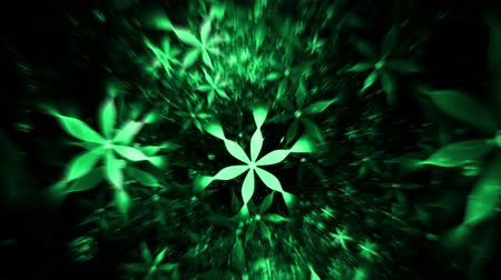 ornament kwiatowy : Whirlpool Of Green Flowers Floral Background  floral background green flowers in circular  motion on black abstract illustration animation   30fps HD1080   seamless loop Wideo