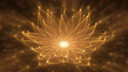 radiante : Radiant Orange Lotus With Rays of Light, Water Lily, Enlightenment or Meditation and Universe, Magic Scene, animated abstract illustration, 30fps, HD1080, seamless loop